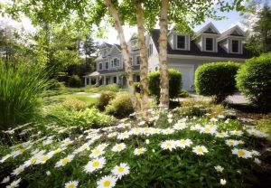 landscaping-design-maintenance-lawn